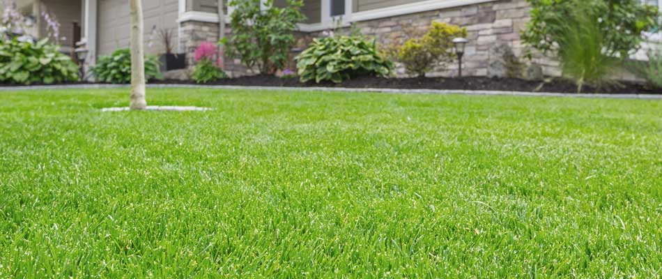 Healthy green lawn and landscaping fertilized and maintained by Emerald Outdoor, LLC.