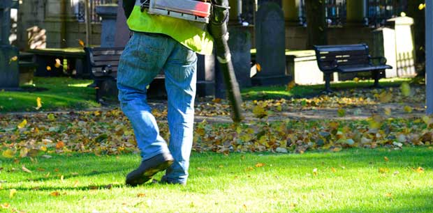 Emerald Outdoor, LLC employee blowing leaves during a fall yard cleanup service.